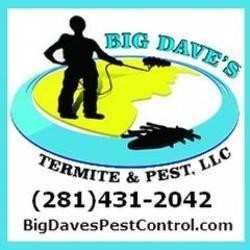 Know the Best Possible Means to Control Termite