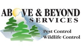 Above & Beyond Services