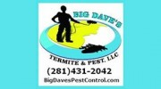 Services that reliable pest control companies can offer you