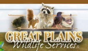 Great Plains Wildlife and Pest Control Services
