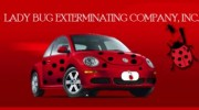 Lady Bug Exterminating