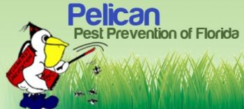 Pelican Pest Prevention