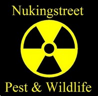 Nukingstreet Pest & Wildlife Control