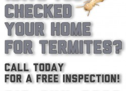Call us for your free termite inspection at 310-844-0999