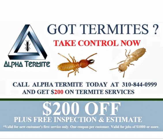 Get $200 Off On Your Initial Termite Treatment