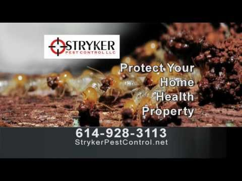 Stryker Pest Control Ad